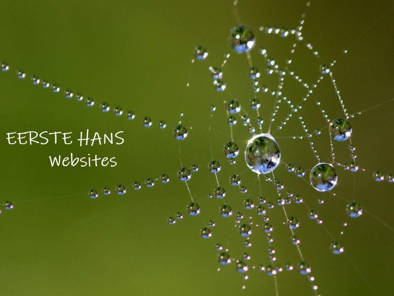 ehwebsites